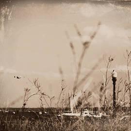Aurelio Zucco - The Summer Wind II