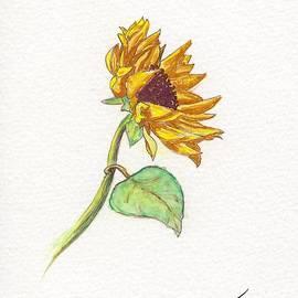 Jack Hedges - The Sunflower