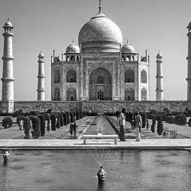 Steve Harrington - The Taj Mahal monochrome