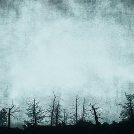 Theresa Tahara - The Trees On The Ridge