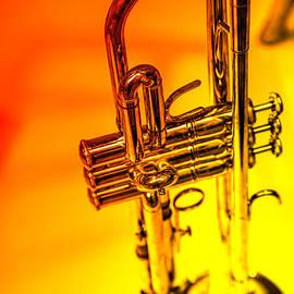 Karol Livote - The Trumpet