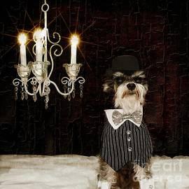 Tisha McGee - The Tuxedo