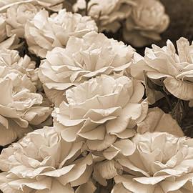 Jennie Marie Schell - The Vintage Rose Garden Sepia