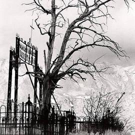 Janis Knight - The Virginia City Cemetery