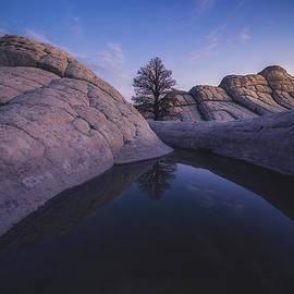 Peter Coskun - The Waterhole
