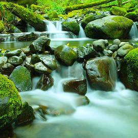 Jeff  Swan - The Way Of Healing Water