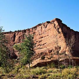 Bob and Nadine Johnston - The Wedge Canyon deChelly