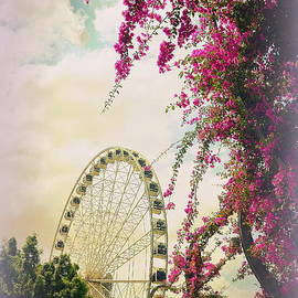 Toni Abdnour - The Wheel of Brisbane