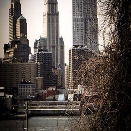 Frank Winters - The Woolworth Building Vignette
