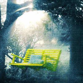 Douglas MooreZart - The Yellow Swing