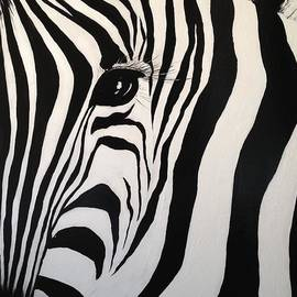 Alan Lakin - The Zebra with One Eye