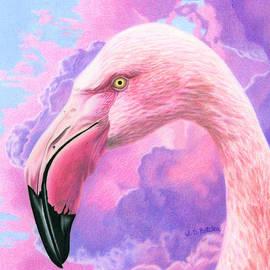 Sarah Batalka - Think Pink Flamingo