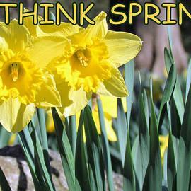 Lori Pessin Lafargue - Think Spring