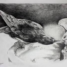 Derrick Higgins - Thirsty Crow
