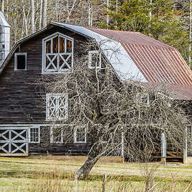 Stephen Brown - This Old Barn