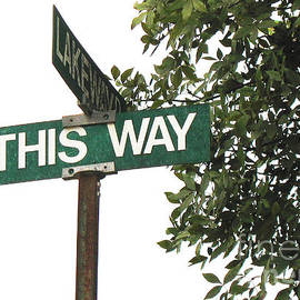 Connie Fox - This Way Street Sign in Color