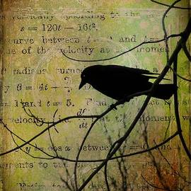 Gothicolors Images - Thoughts Of Crow