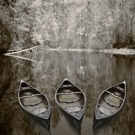 Debra and Dave Vanderlaan - Three Old Canoes
