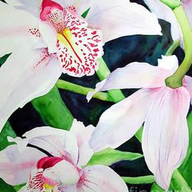 Elizabeth  McRorie - Three Orchids
