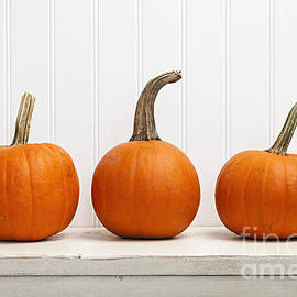 Elena Elisseeva - Three pumpkins