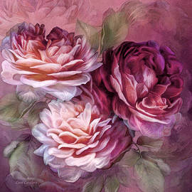 Carol Cavalaris - Three Roses - Burgundy