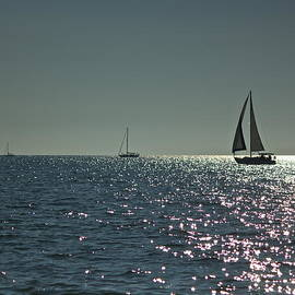Amazing Jules - Three Sailboats