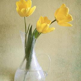 Diana Kraleva - Three yellow tulips