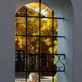 Georgia Mizuleva - Through the Fence Window