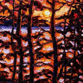 Rob MacArthur - Through the trees