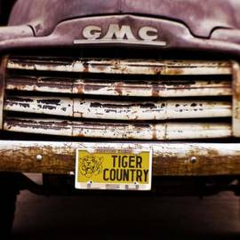 Scott Pellegrin - Tiger Country - Purple and Old