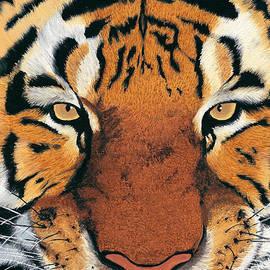 Alina Kaplanov - Tiger Portrait