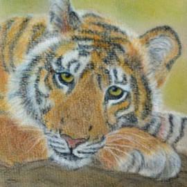 Yggdrasil Art - Tiger Resting
