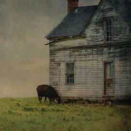 Sue McGlothlin - Til the cow comes home