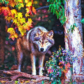 Les Palenik - Timber wolf in fall