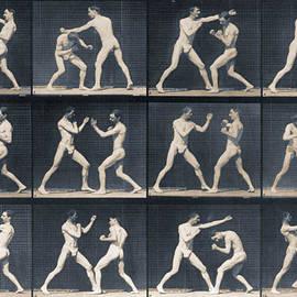Tony Rubino - Time Lapse Motion Study Men Boxing