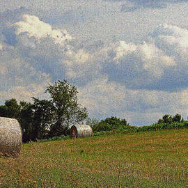 Kay Novy - Time To Make Hay