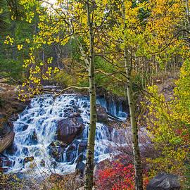 Lynn Bauer - Tioga Creek Fall Cascades