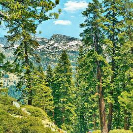 Bob and Nadine Johnston - Tioga Road Yosemite National Park