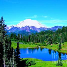 Ann Johndro-Collins - Tipsoo Lake Mount Rainier