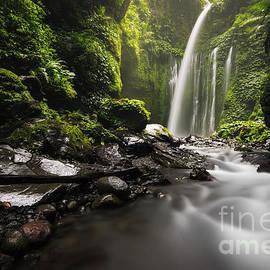 Nyoman Ady sanjaya - Tiu Kelep Waterfall