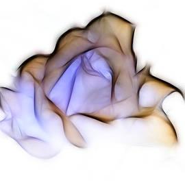 Lynn Bolt - To A Rose