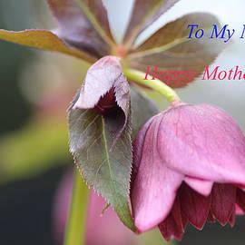 Rumyana Whitcher - To My Mum