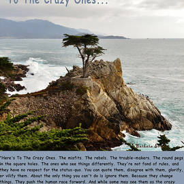 Barbara Snyder - To The Crazy Ones