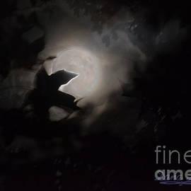 Dana Haynes - To The Moon Alice
