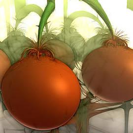 Bramvan - Tomaten