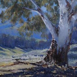 Jeanette Riley - Tongarra Hills
