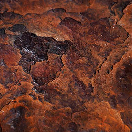 Rona Black - Topography of Rust