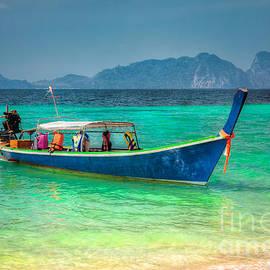 Adrian Evans - Tourist Longboat