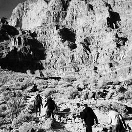 Joe Fox - tourists walking through bottom of the grand canyon up to helipads Arizona USA
