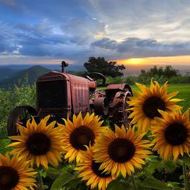 Debra and Dave Vanderlaan - Tractor Heaven
